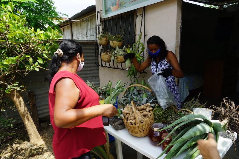Ecuador Grapples with Food Sovereignty