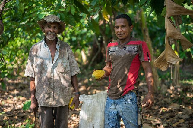 A father and his son who have substituted coca for cocoa on their farm in the Antioquia department of Colombia. (USAID)