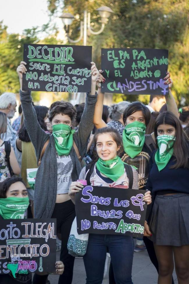 Recent protests in favor of a bill that would legalize abortion in Argentina (Pau Malén)