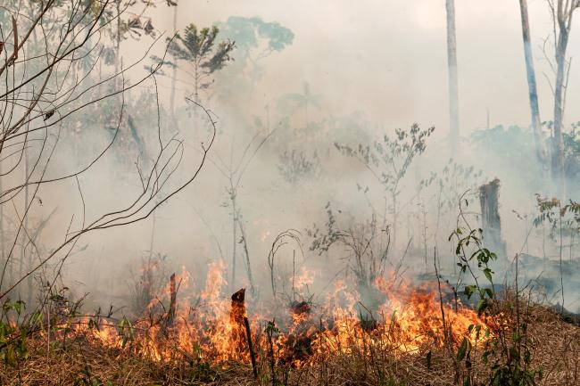 Fires burn in the Brazilian Amazon. (Photo by Vinícius Mendonça/Ibama via Flickr)