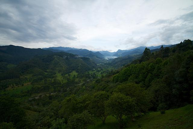 A national park in Colombia. The latest ceasefire between the FARC and the government could reduce environmental destruction in the country. (McKay Savage / Creative Commons)