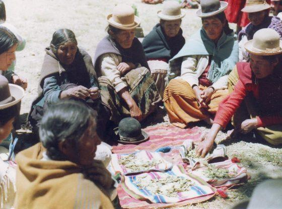 A meeting of Aymara mothers as part of ayllu reconstitution efforts in Ilata, Bolivia, 1985. The group is ritually sharing and chewing coca leaves, which are spread out in the center of the gathering. (Courtesy of the Andean Oral History Workshop)