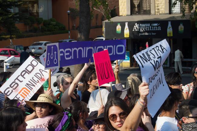 Una manifestación en Febrero 2019 en la Ciudad de México (Foto por Madeleine Wattenbarger)