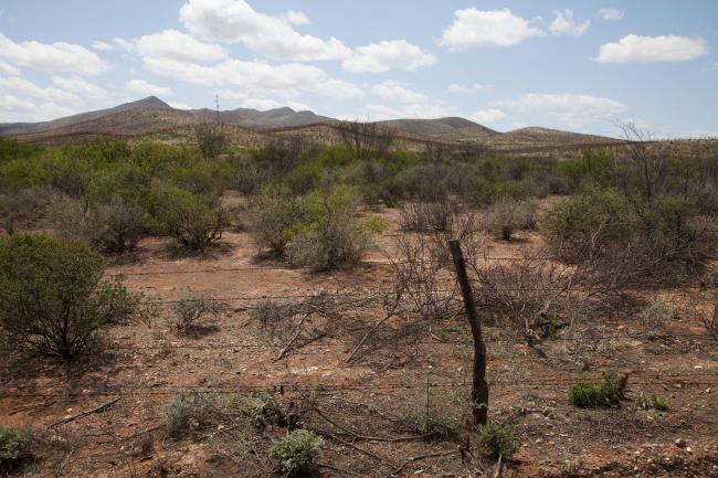 Douglas, Arizona (Photo by Ignacio Evangelista)