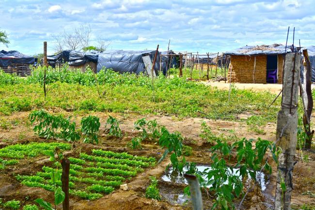 An occupation Camp in Filhos da Luta, Pernambuco in 2014. (Photo by Mel Gurr)