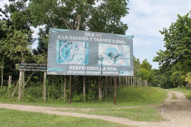 In Uaxactún, Petén, a sign warns against hunting and illegal wildlife trafficking (Photo: Martha Pskowski).