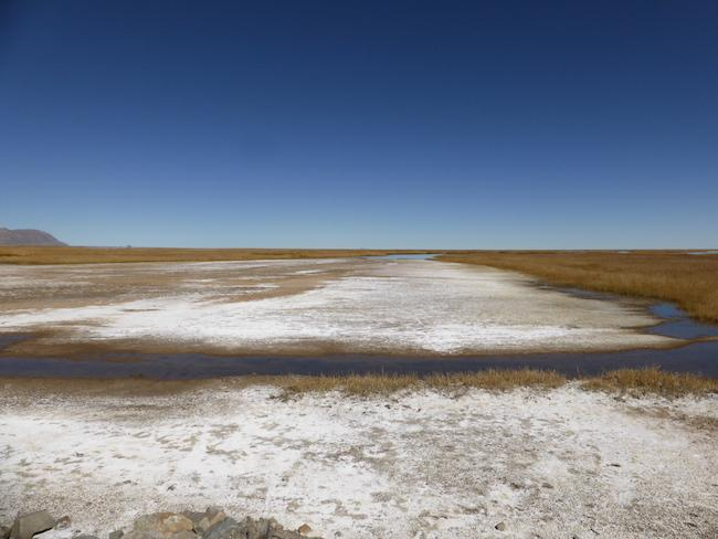 Minerals and pollutants remain in a drying marsh along the Desaguadero River, June 2014. (Clayton Whitt)