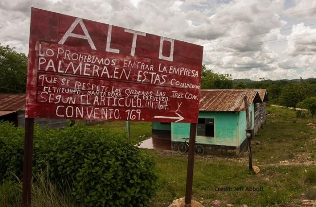 """STOP: We forbid palm companies from entering these communities"" This sign is in the Municipality of Vista Hermosa, Chisec, Alta Verapaz, Guatemala. (Photo by Jeff Abbott)"