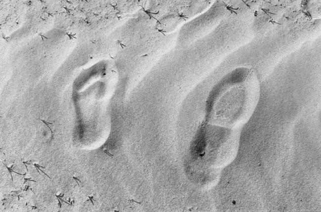 Footprints in the Imperial Valley desert, near the U.S.-Mexico border (Photo by Mizue Aizeki)