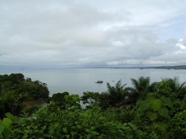 Monkey Point, looking southward toward the indigenous Rama community of Bangkukuk Taik (Photo by Jennifer Goett)