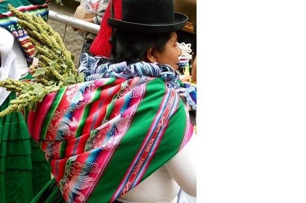 Woman carrying quinoa stalks during a harvest festival in Oruro, Bolivia (Photo by Linda Farthing)