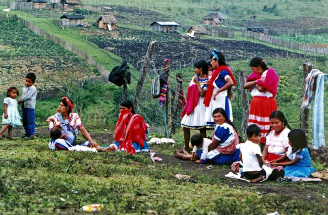 Tojolobal Indigenous women and children sit near their homes in a Zapatista village that recuperated these lands in 1996, once run by a large ranch owner. (Photo by Tim Russo)
