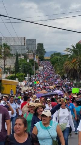 A mega march in Oaxaca City the day after the killings (Photo by Oscar Martínez)
